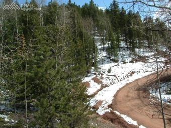 661 Homestead Road, Divide, CO 80814 (#2355830) :: 8z Real Estate