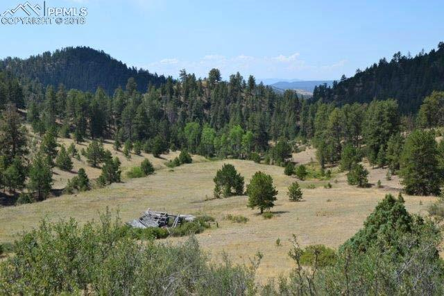 TBD Secluded Canyon Heights, Florissant, CO 80816 (#2432955) :: 8z Real Estate