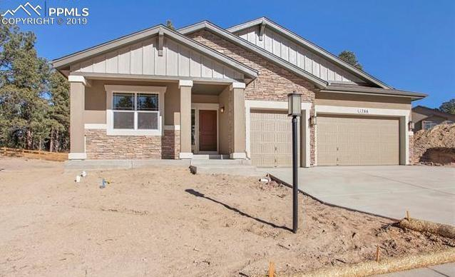 1766 Catnap Lane, Monument, CO 80132 (#2433681) :: Tommy Daly Home Team