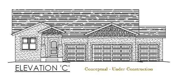 10336 Webster Pass Court, Colorado Springs, CO 80924 (#2499341) :: The Daniels Team