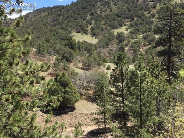 TBD Dave Drive, Canon City, CO 81212 (#2525046) :: Finch & Gable Real Estate Co.