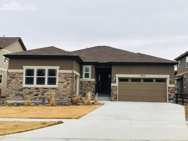 5858 Leon Young Drive, Colorado Springs, CO 80924 (#2571595) :: 8z Real Estate