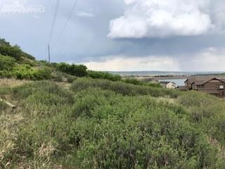 3118 Lakefront Drive, Monument, CO 80132 (#2578208) :: Harling Real Estate