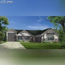 9997 Bracknell Place, Falcon, CO 80831 (#2619306) :: Tommy Daly Home Team