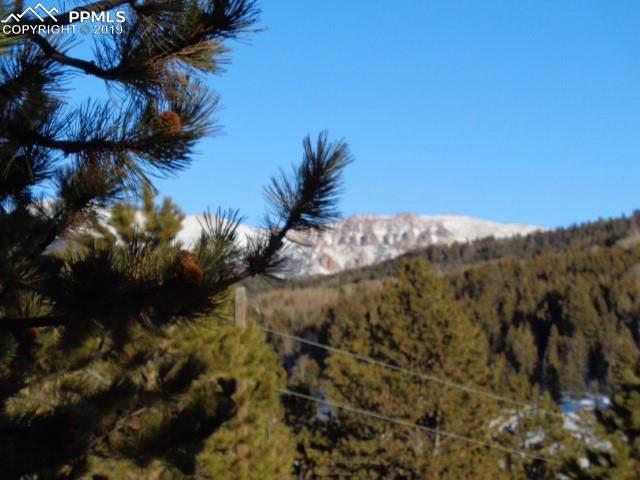 203 Tuscanora Drive, Cripple Creek, CO 80813 (#2653500) :: The Treasure Davis Team