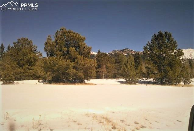 000 County 61 Road, Cripple Creek, CO 80813 (#2693237) :: CC Signature Group