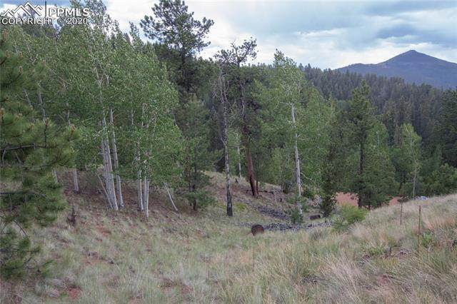255 Idlewild Drive, Cripple Creek, CO 80813 (#2758440) :: 8z Real Estate