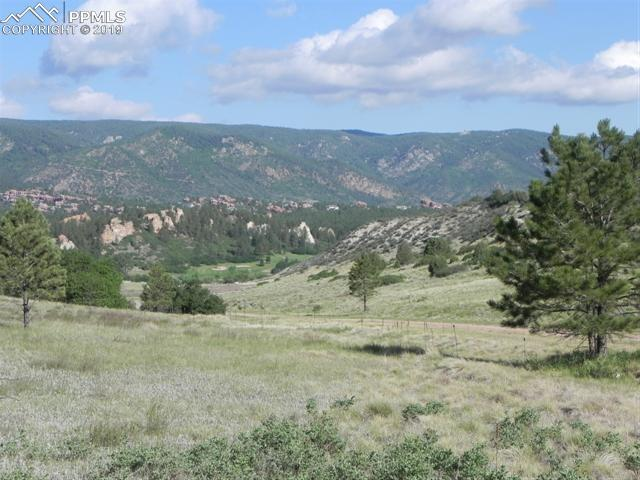 4742 Comanche Drive, Larkspur, CO 80118 (#2790131) :: Harling Real Estate