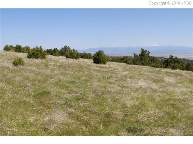 Vaughn View Drive, Pueblo, CO 81005 (#2878674) :: 8z Real Estate