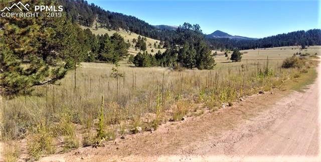 Penrose Circle, Cripple Creek, CO 80813 (#3027424) :: Compass Colorado Realty