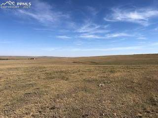 36590 E Ramah Drive, Ramah, CO 80832 (#3080691) :: Action Team Realty