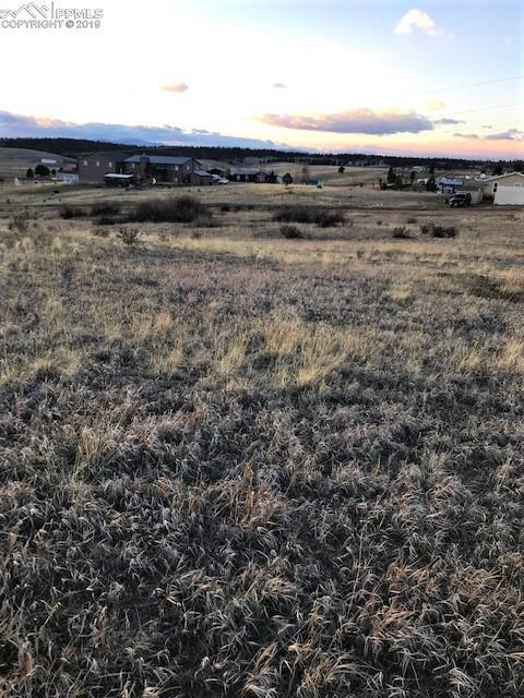 797 Maid Marian Drive, Divide, CO 80814 (#3122846) :: Venterra Real Estate LLC