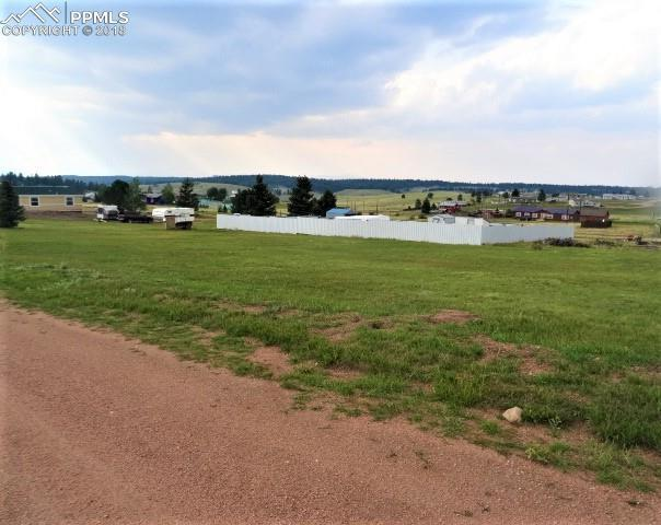 TBD Will Scarlet Drive, Divide, CO 80814 (#3152885) :: Venterra Real Estate LLC