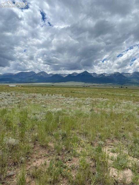 S Fourth Street, Westcliffe, CO 81252 (#3220498) :: The Kibler Group