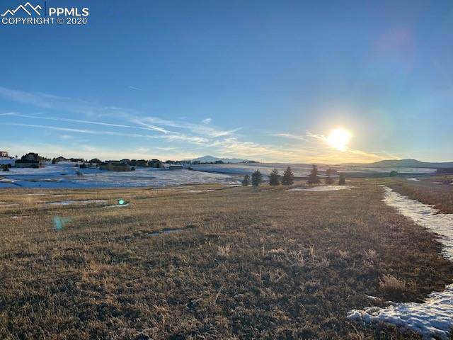 1335 Montcombe Drive, Monument, CO 80132 (#3253135) :: Action Team Realty