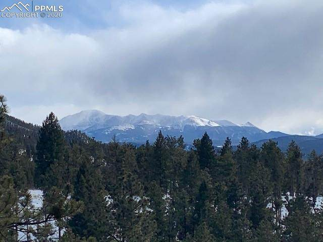1480 County Road 79, Woodland Park, CO 80863 (#3292313) :: The Daniels Team