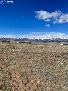 520 County Road 310, Westcliffe, CO 81252 (#3367017) :: Action Team Realty