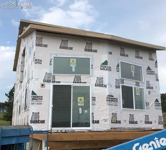 85 Estes Circle, Florissant, CO 80816 (#3449303) :: 8z Real Estate