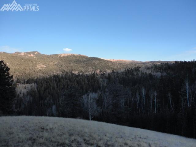 2868 County 61 Road, Cripple Creek, CO 80813 (#3483912) :: RE/MAX Advantage