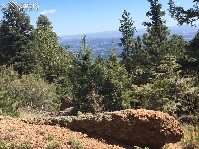 145 Spruce Road, Manitou Springs, CO 80829 (#3545250) :: The Treasure Davis Team