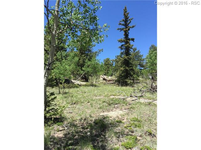 TBD Elk View Road, Lake George, CO 80827 (#3660386) :: 8z Real Estate