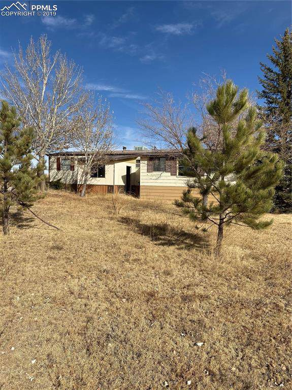 12400 County 141 Road, Simla, CO 80835 (#3663961) :: Tommy Daly Home Team
