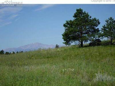 15020 Apex Ranch Road, Peyton, CO 80831 (#3721618) :: 8z Real Estate