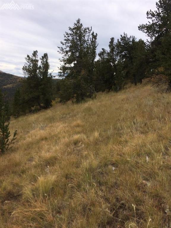 TBD Rhyolite Road, Cripple Creek, CO 80813 (#3741196) :: 8z Real Estate