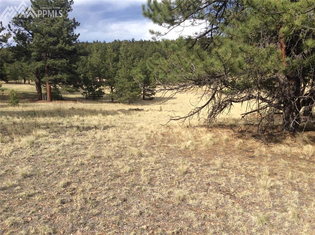 625 Mustang Trail b90342c891