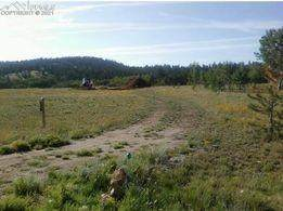 1248 Frees Loop, Hartsel, CO 80449 (#3803425) :: Tommy Daly Home Team