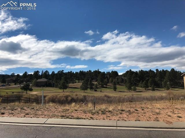 1306 Longs Point #4, Woodland Park, CO 80863 (#3840830) :: CC Signature Group