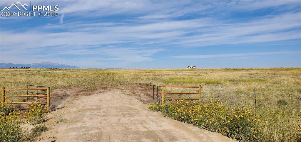 6880 Peyton Highway - Photo 1