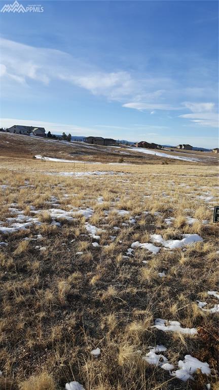4460 Settlers Road, Colorado Springs, CO 80908 (#4064874) :: 8z Real Estate
