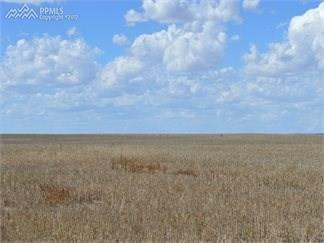 0 Whittemore Road, Rush, CO 80833 (#4081836) :: 8z Real Estate