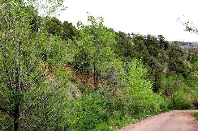000 Trestle Trail, Manitou Springs, CO 80829 (#4096920) :: The Cutting Edge, Realtors