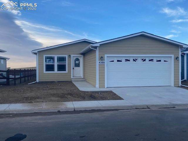 4288 Gray Fox Heights, Colorado Springs, CO 80922 (#4192723) :: The Treasure Davis Team