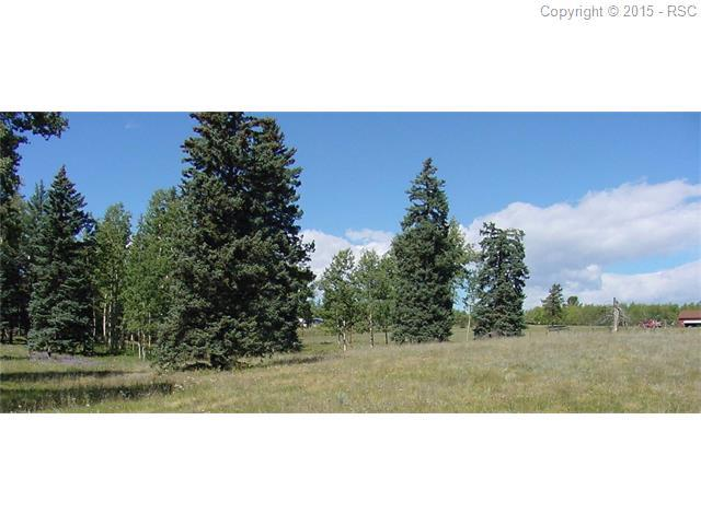104 Owl Nest Heights Heights, Divide, CO 80814 (#4275244) :: 8z Real Estate