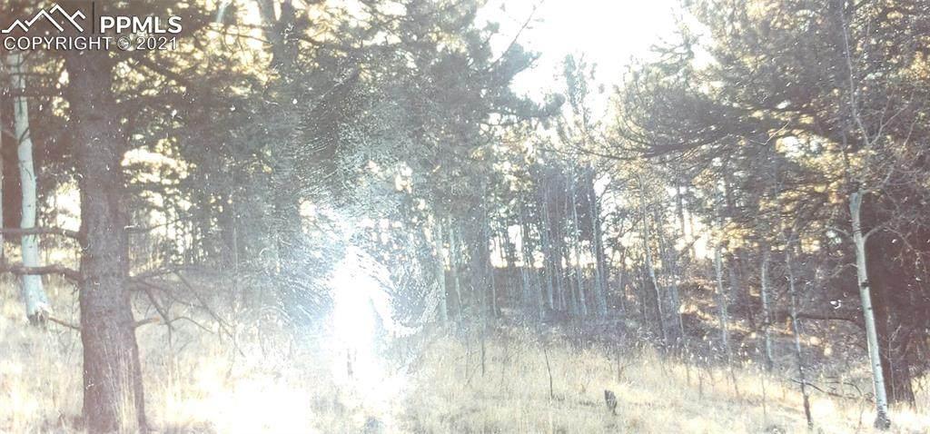 188 Timber Ridge Road - Photo 1