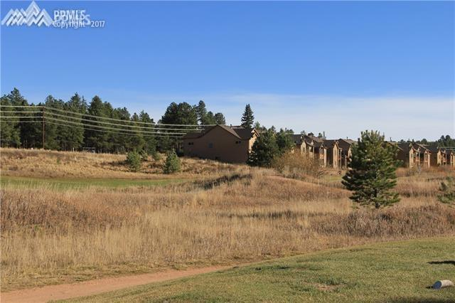 Longs Point, Woodland Park, CO 80863 (#4361972) :: The Treasure Davis Team