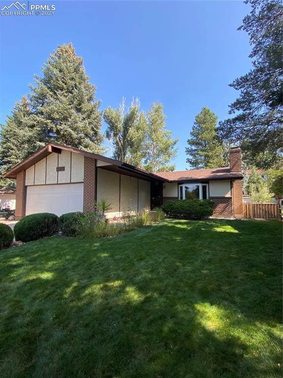 3029 Avondale Drive, Colorado Springs, CO 80917 (#4404147) :: The Treasure Davis Team   eXp Realty
