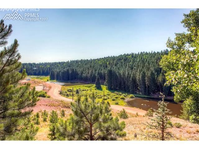 1989 Blue Mesa Drive, Divide, CO 80814 (#4407663) :: Jason Daniels & Associates at RE/MAX Millennium