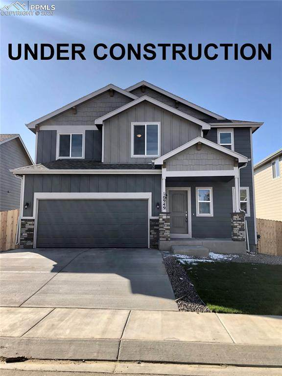 10045 Castor Drive, Colorado Springs, CO 80925 (#4435087) :: Fisk Team, RE/MAX Properties, Inc.