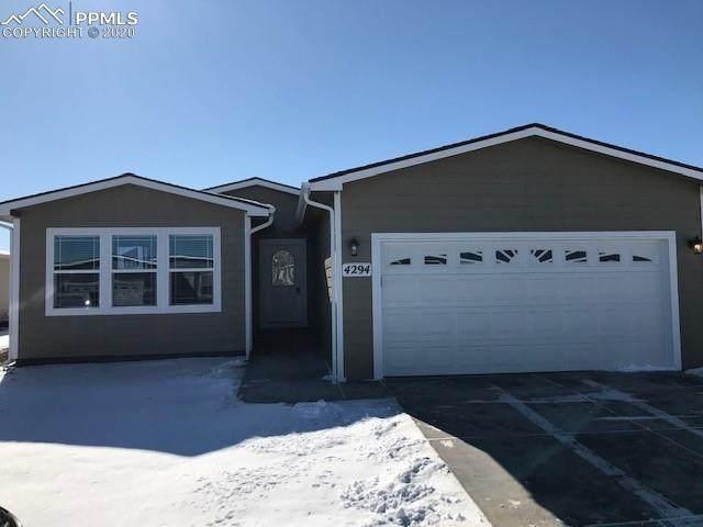 4294 Gray Fox Heights, Colorado Springs, CO 80922 (#4492190) :: Action Team Realty