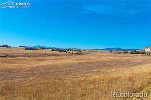 1389 Montcombe Drive, Monument, CO 80132 (#4558440) :: The Daniels Team