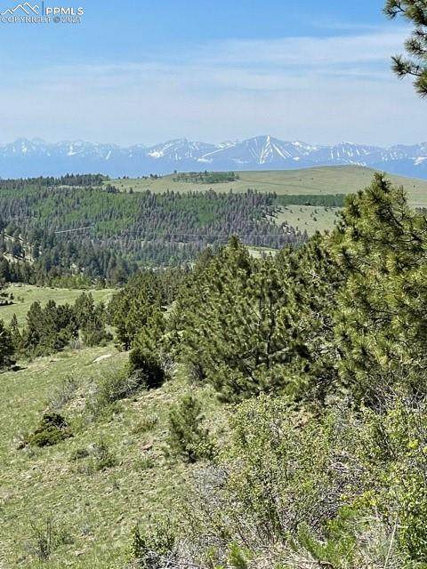 Antelope Trail, Cotopaxi, CO 81223 (#4580413) :: The Treasure Davis Team | eXp Realty