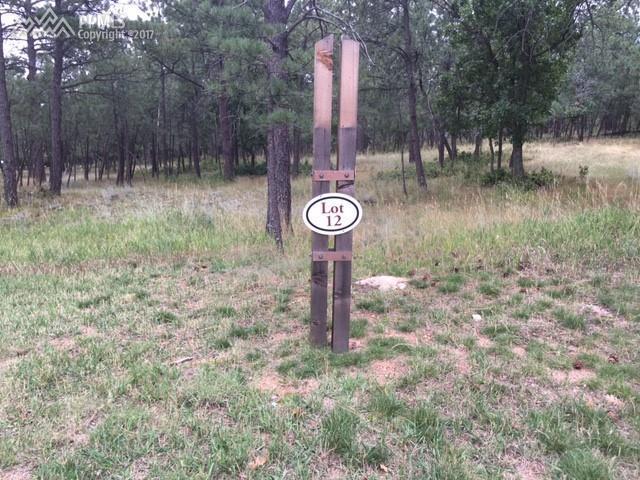 2405 Stratton Pines Point, Colorado Springs, CO 80906 (#4590483) :: 8z Real Estate