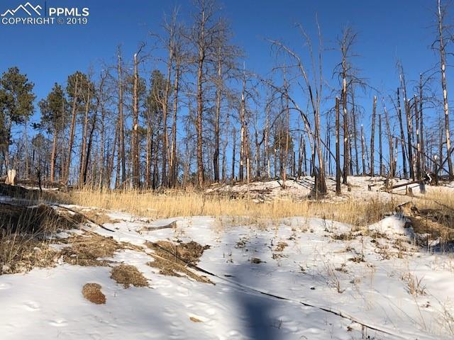 13215 W Ravine Drive, Colorado Springs, CO 80908 (#4653494) :: The Daniels Team