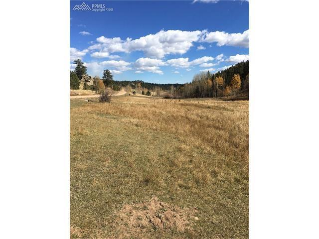 TBD Cripple Creek Road, Cripple Creek, CO 80813 (#4738865) :: CENTURY 21 Curbow Realty