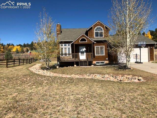 482 Gray Horse Circle, Woodland Park, CO 80863 (#4764247) :: The Kibler Group