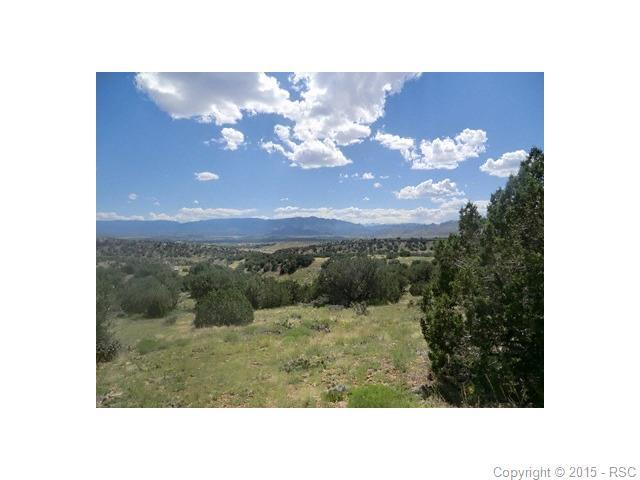 1239 Canon Ridge Road, Canon City, CO 81212 (#4975931) :: 8z Real Estate